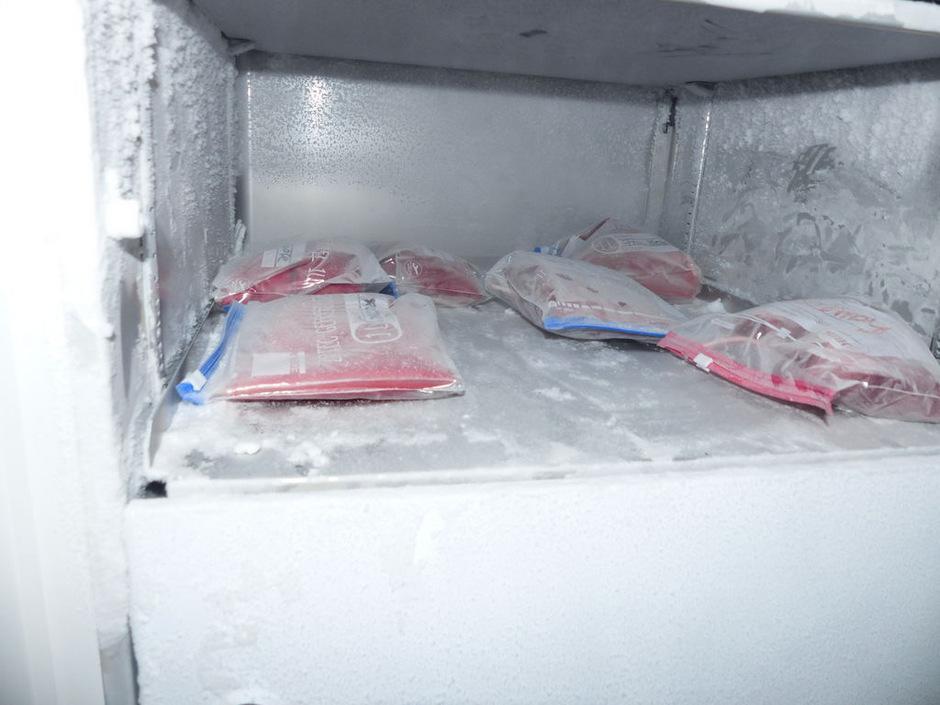 Gefrorene Blutbeutel, Spritzen, Wachstumshormone sowie eine Blutzentrifuge wurden in der Garage des Doping-Arztes festgestellt.