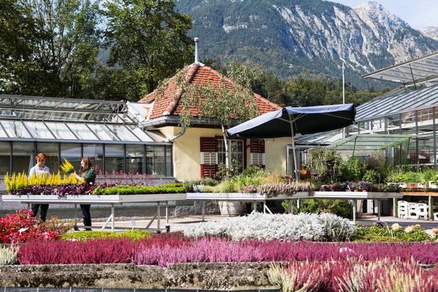 Die Gärtnerei ist ein Blickfang bei einem Rundgang im Rotholzer Schulgelände. Auch beim Tag der offenen Tür wird Buntheit geboten.