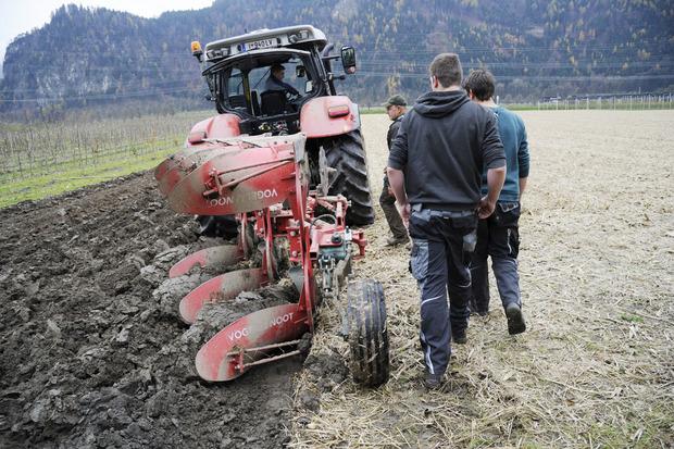 Beim Tag der offenen Tür in der LLA Rotholz gibt es viele Einblicke in die Land- und Forstwirtschaft, Hauswirtschaft und den Gartenbau.