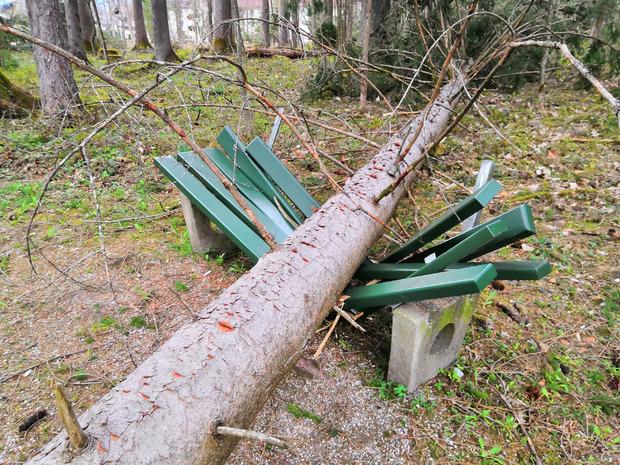 Im Scheulingwald in Mayrhofen wurden mehrere Bäume entwurzelt und eine Parkbank beschädigt. Aus Sicherheitsgründen bliebt der Rundwanderweg im Wald vorerst gesperrt.