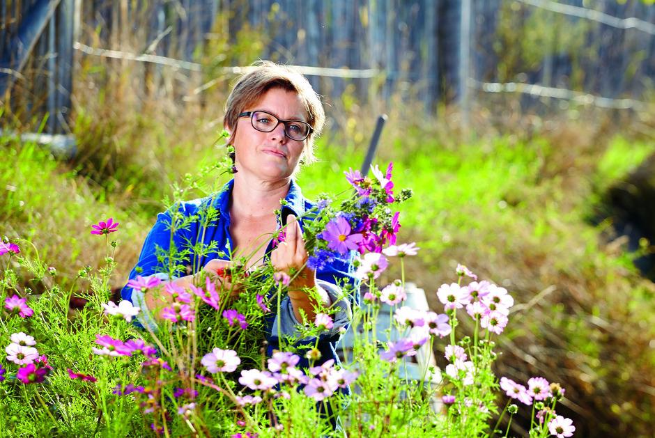 Andrea Heistinger plädiert für ein gutes Gefühl beim Gärtnern. Von der richtigen Erde über denAnbau bis zur Pflanzenkunde führt sie durch das gesamteGartenjahr. Der Schwerpunkt liegt auf Bio. (Löwenzahn Verlag, 184 Seiten; 24, 90 Euro).