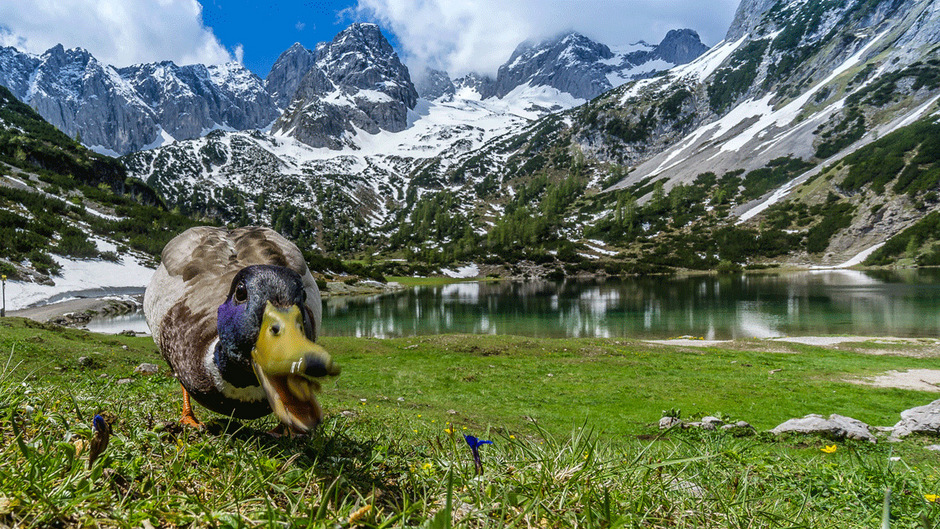 Auch am Seebensee im Mieminger Gebirge wird es in der kommenden Woche wieder wärmer.