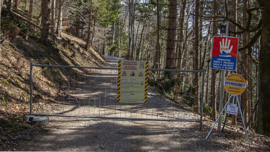 Rund um die Arzler Alm kommt es aufgrund von Aufräumarbeiten nach den massiven Lawinenschäden zu Sperren auf den Forstwegen.