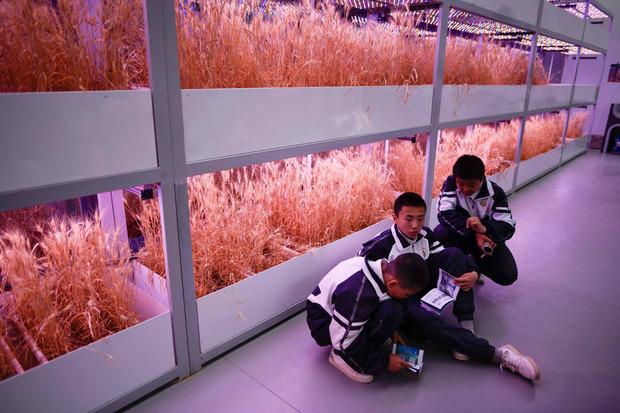 Schüler erkunden das Innere der Basis.