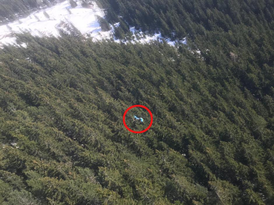 Der Gleitschirm-Flug endete in 25 Metern Höhe in einer Baumkrone.