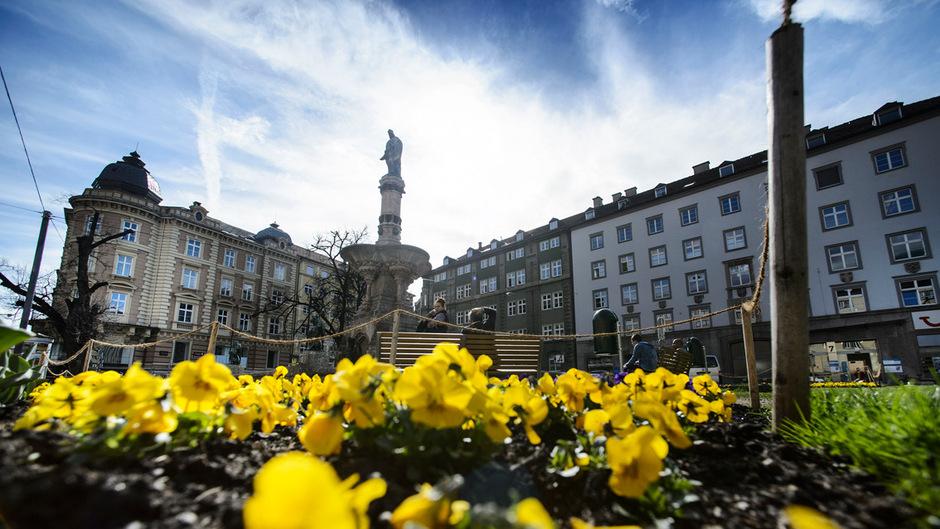 Frühling in Innsbruck: Auch in den kommenden Tagen wird es wieder schön.