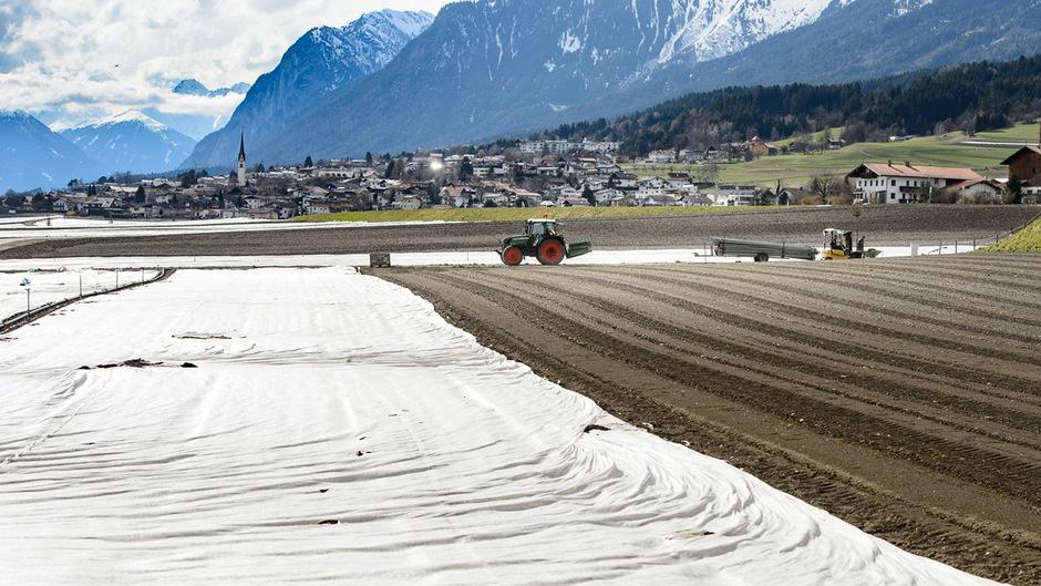 Die Anbauflächen auf den Thaurer Feldern. Nur 0,5 Prozent des Ackerbaus in Tirol entfallen auf Kartoffel, bei Radieschen hat Tirol hingegen die Nase vorne.