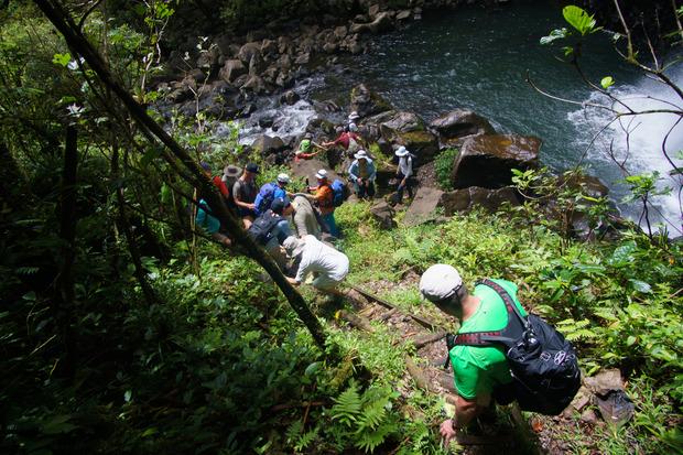 Auf Taveuni geht es über Pfade zu Wasserfällen mitten im Dschungel.
