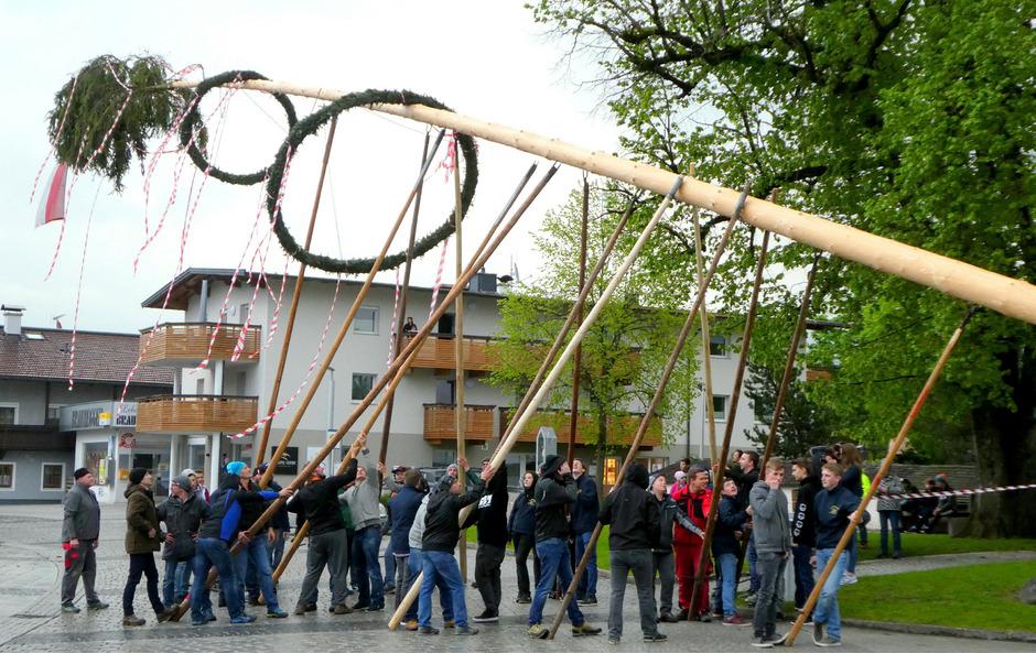 Insgesamt 30 Mitglieder der Landjugend halfen mit, um den 34 Meter langen Maibaum in Radfeld in Position zu bringen.