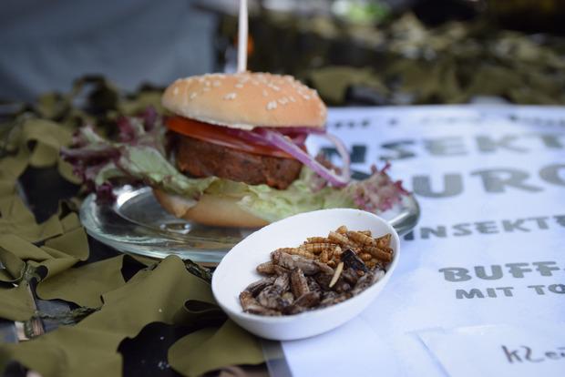Neues probieren kann man beim Insektenzelt: Im Burger winden sich die Würmer aber nicht mehr.