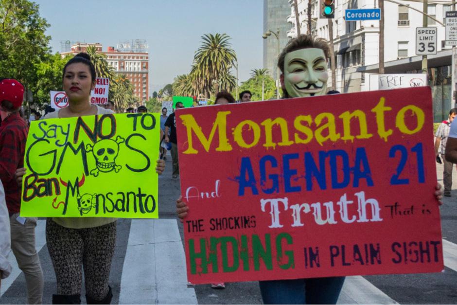 Der Saatgutriese Monsanto hat unzählige Kritiker. Besonders das umstrittene Unkrautvernichtungsmittel Glyphosat bringt viele Menschen gegen den Konzern auf.