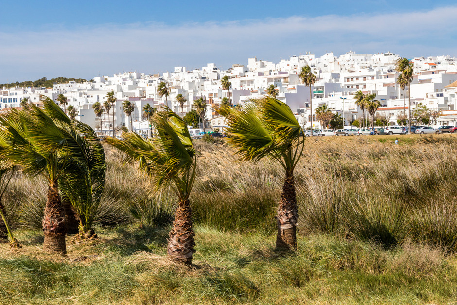Die weißen Häuser, wie hier in Conil de la Frontera, sind typisch für die Region.