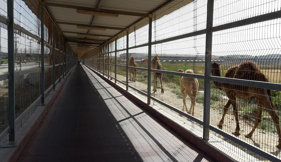 """Ein Blick auf den Durchgang """"Erez Crossing"""", dem Personenübergang zwischen Israel und dem Gaza-Streifen im Norden des Gaza-Streifens."""