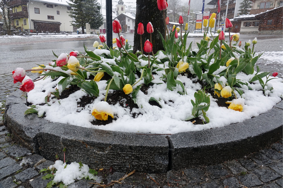 In höheren Tallagen in Tirol bleibt es winterlich.