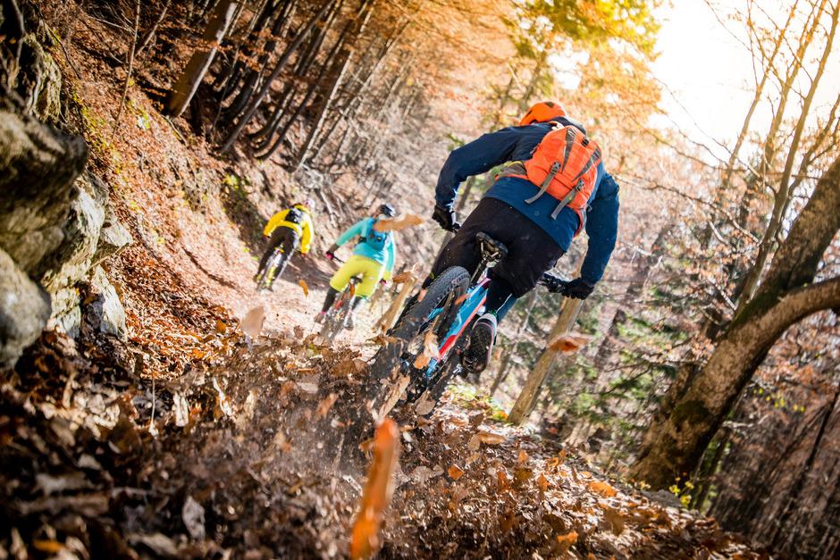 """Die Gemeinde Oberndorf folgt dem Trend und will im """"Gemeindewald"""" für Biker künftig vier Downhillstrecken in unterschiedlichen Schwierigkeitsgraden anbieten."""