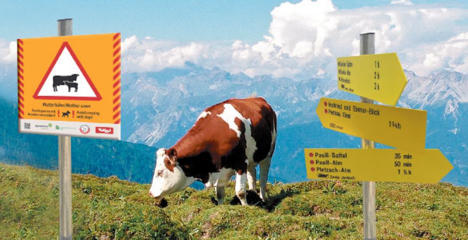 Droht in den Tiroler Bergen ein Schilderwald? Links die neuen Tafeln für die Almbauern, rechts Wegweiser für Bergwege.