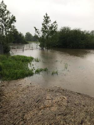 Wegen Überflutung gesperrt werden musste etwa die Auffahrt Dornbirn-Nord auf der Rheintalautobahn (A14) in Richtung Bregenz.
