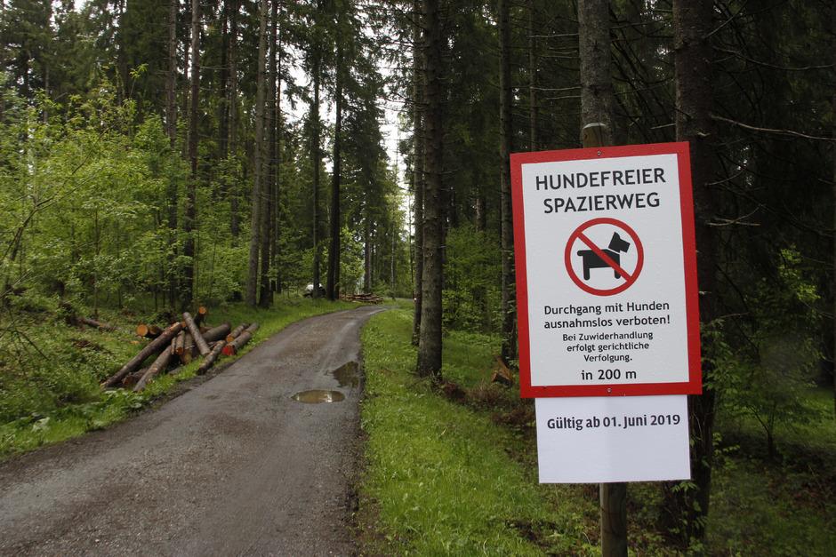 Hermann Huber sperrt den Wanderweg zu seinem Achrain-Hof in Kitzbühel für Hundebesitzer. Vor allem das mangelnde Verständnis der Hundebesitzer sei dafür ausschlaggebend.