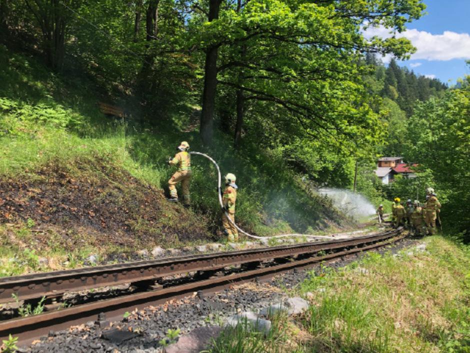 Auslöser war eventuell die kurz zuvor vorbeifahrende Dampflock der Achenseebahn.