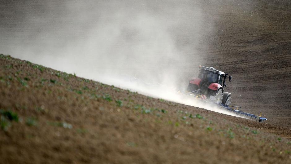 85 Prozent der landwirtschaftlichen Flächen in Österreich sind gegen Hagel versichert.