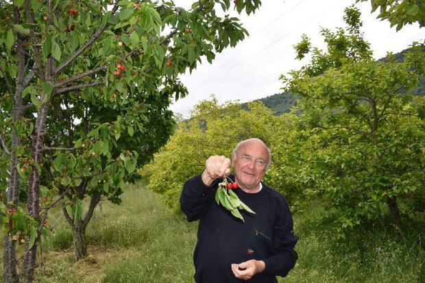 Robert Kran führt durch seinen einzigartigen Obstgarten in Avapessa.