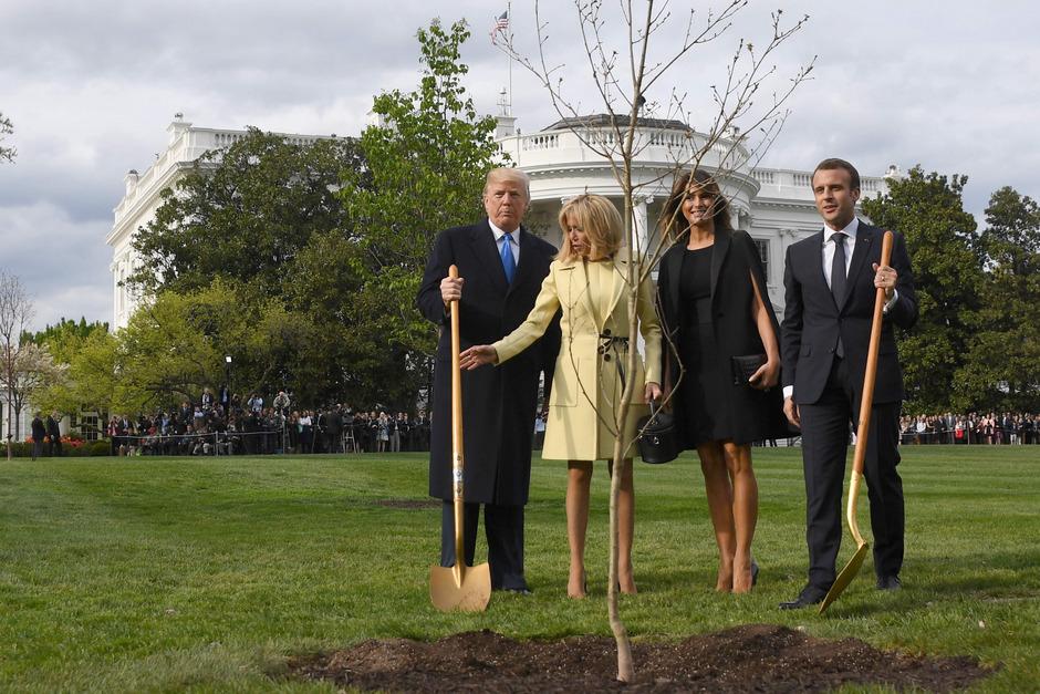 Die Präsidenten und ihre Ehefrauen hatten die Eiche medienwirksam eingegraben.
