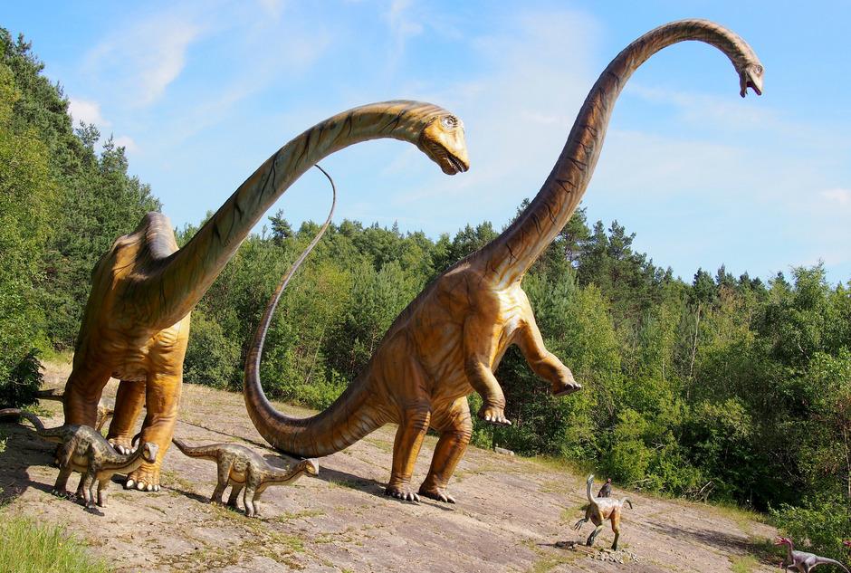 Eine Herde nachgebauter Diplodocus-Saurier.