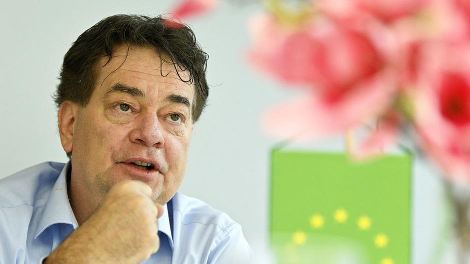 Grünen-Bundessprecher Werner Kogler.