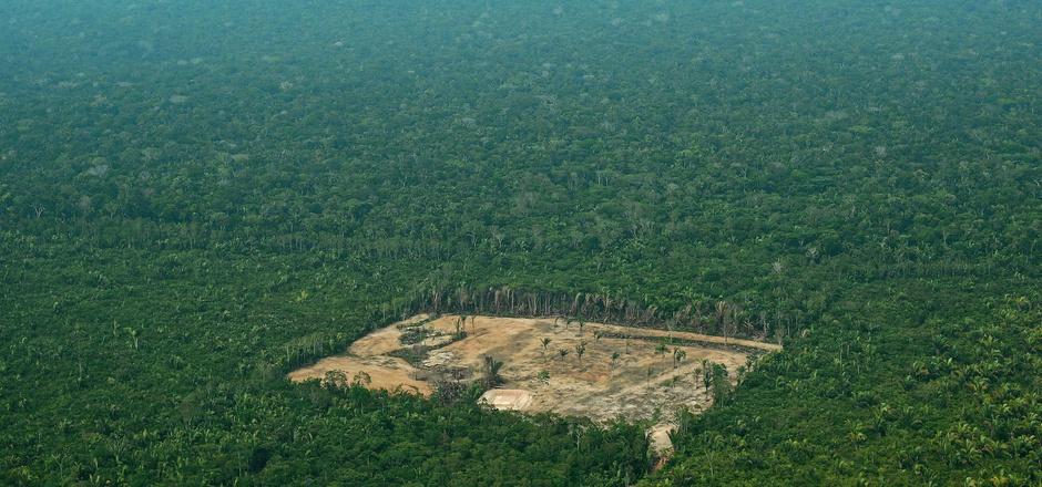Ein abgeholzter Bereich im Amazonas.