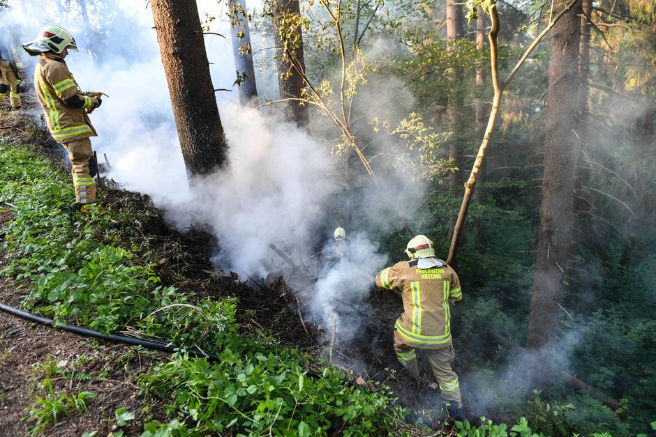 In der Kranebitter Au brannte Freitagfrüh ein Stück Wald.