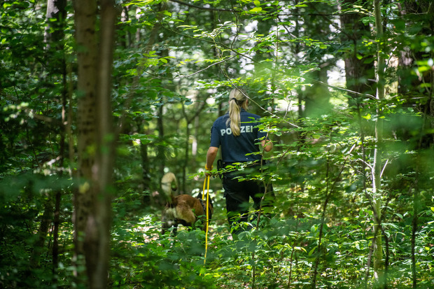 Eine Polizistin sucht mithilfe eines Suchhundes in einem Waldstück nach Hinweisen.