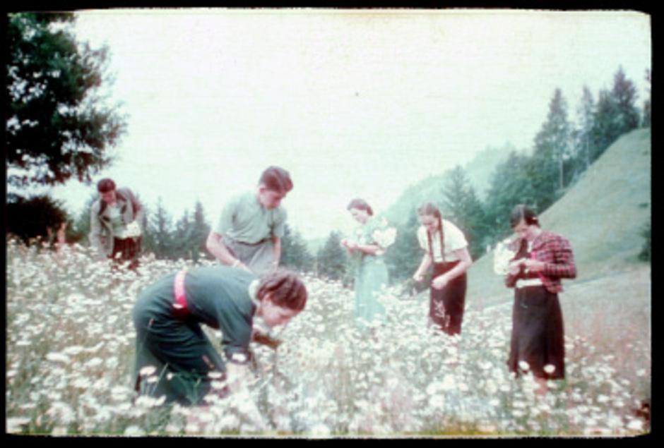 Die Margeriten so nah, der Krieg noch fern. Junge Erwachsene beim Blumenpflücken.