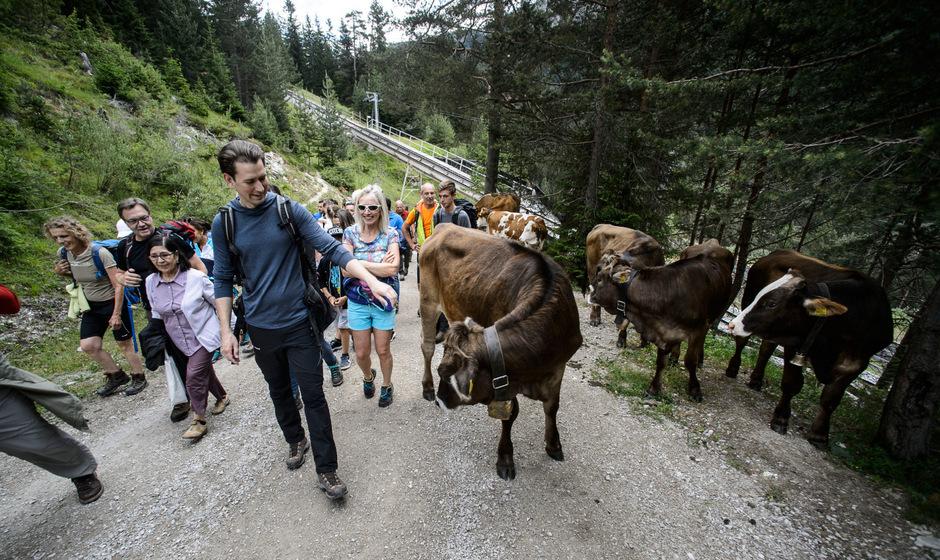 ÖVP-Chef Sebastian Kurz wanderte bei Seefeld auf die Rosshütte. Wie viele Fans mitwanderten, war danach strittig.