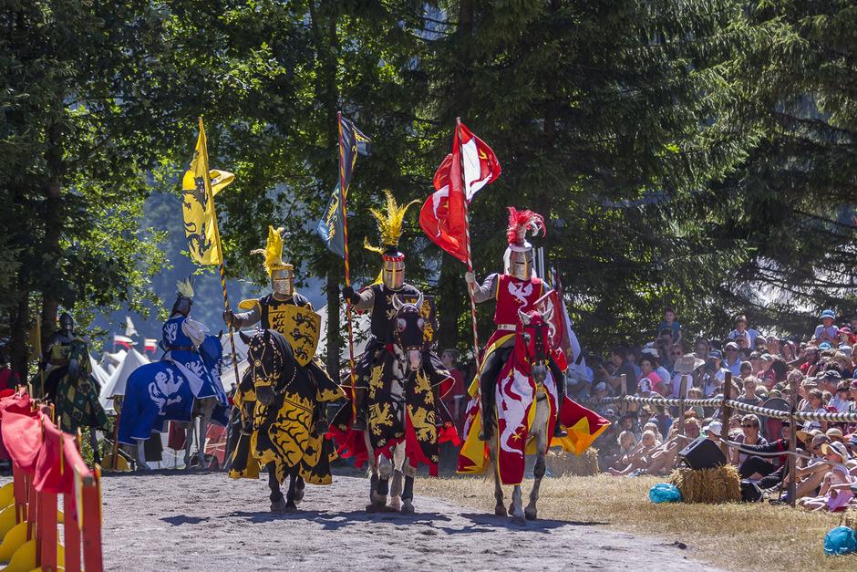 Farbenprächtige Ritter auf Pferden – der Besuch Ehrenbergs ist dieses Wochenende für Historienfreunde ein Muss.