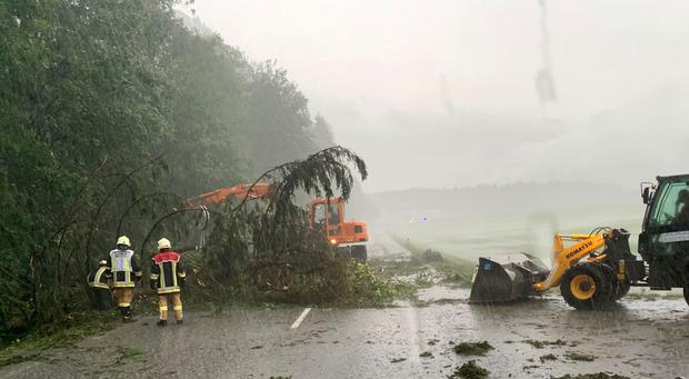 Umgestürzte Bäume, wie hier in Ebbs, gab es Samstagnachmittag einige.