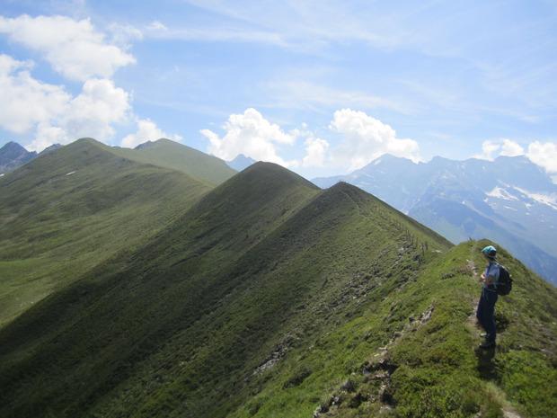 Entlang eines Weidezauns marschiert man auf dem grasigen Kamm bis zur weit hinten liegenden Gammerspitze.