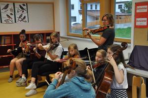 Die Streichergruppe ist eine der fünf Instrumentalgruppen.