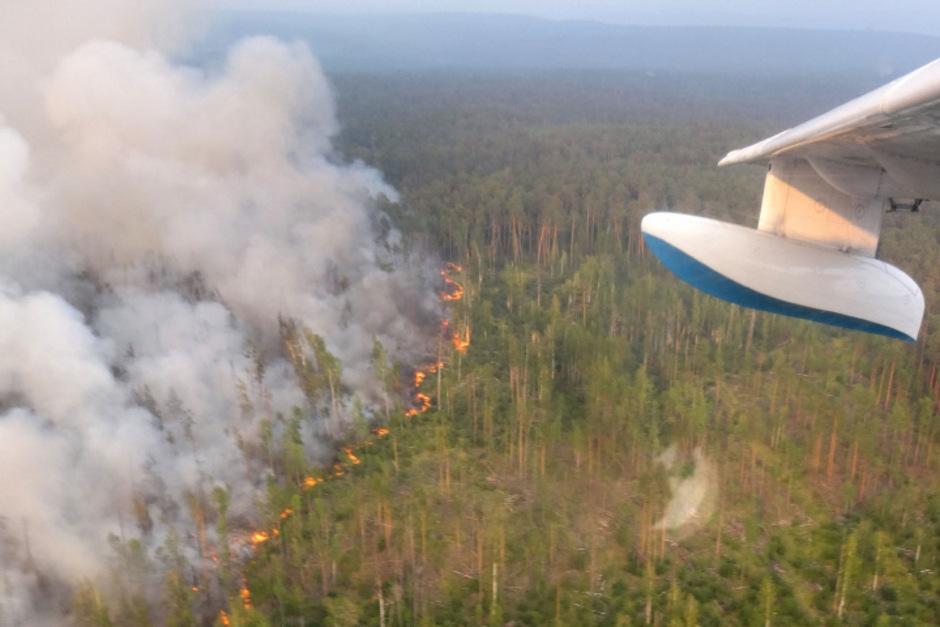 Seit Tagen kämpfen Einsatzkräfte und Freiwillige gegen die Flammen.