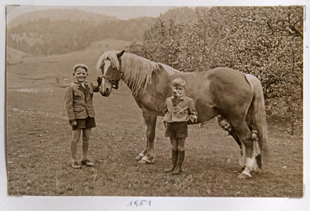 Schon als 13-Jähriger versorgte Taxauer (l.) mit seinen Geschwistern Georg und Annemarie die Haflinger am eigenen Hof in Erl.