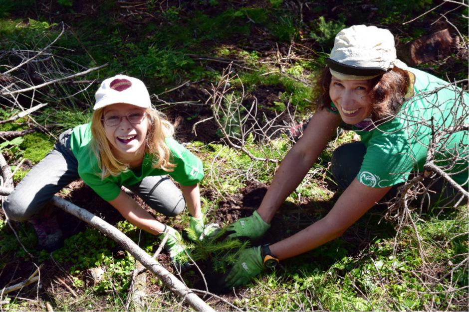 Die freiwilligen Helfer zeigten beim Bergwaldprojekt in Obernberg großen Einsatz – auch beim Setzen von jungen Bäumen.