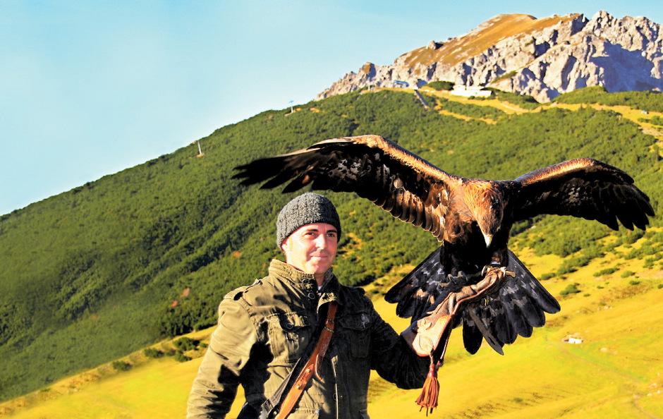 Ob unterwegs mit Falkner Norman Vögeli ...