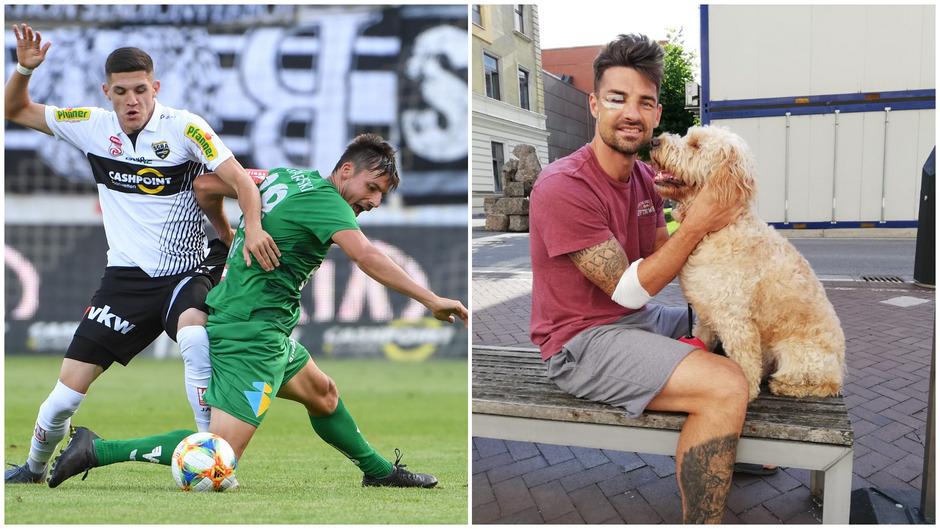 WSG-Routiniers auf verschiedenen Schauplätzen – Clemens Walch (in Grün) will wie in Altach auch gegen St. Pölten rackern, Florian Buchacher erhielt indes im Krankenhaus Besuch von seinem Hund Emilio.