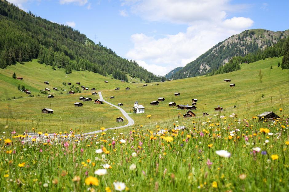 Die Erlebnisregion Ried, Prutz und Pfunds organisierte den Wiesenmonat Juni mit insgesamt 35 Veranstaltungen im Zeichen der Nachhaltigkeit und Umwelt.
