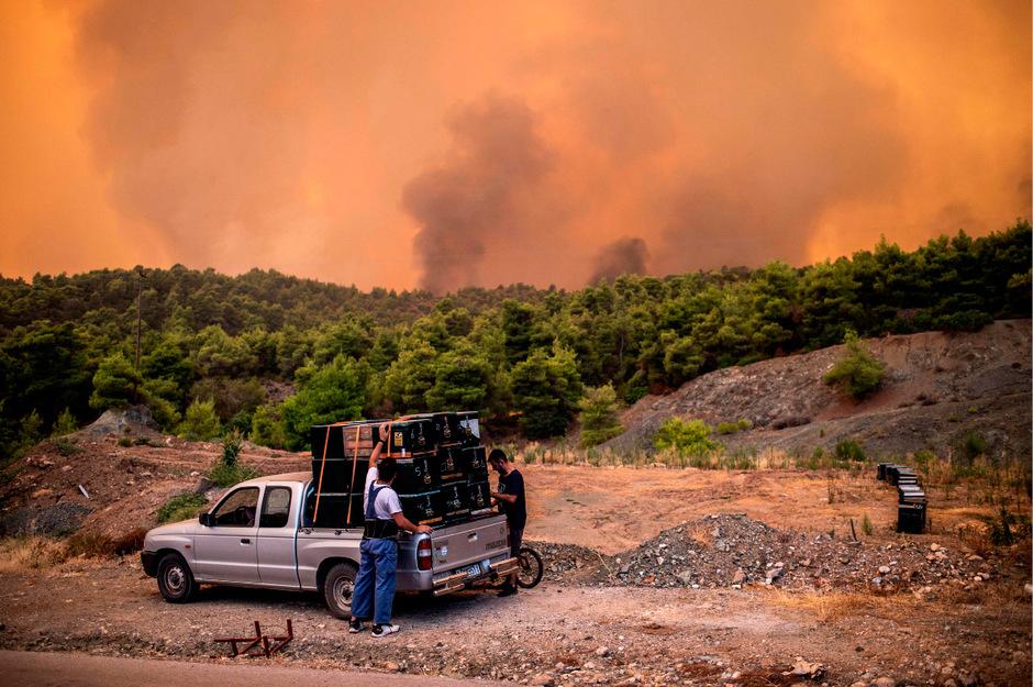 Nach Schätzungen des Gouverneurs der Region sind bislang 2500 Hektar Pinienwald den Flammen zum Opfer gefallen.