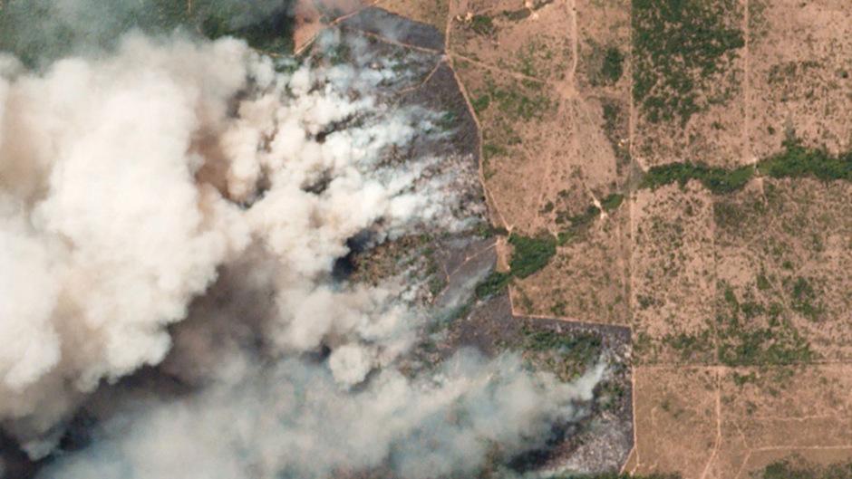 Üblicherweise werden in Brasilien bereits gerodete Waldflächen angezündet, um Unterholz zu verbrennen, wie Greenpeace erklärt. Weil es derzeit in der Region ungewöhnlich trocken ist, greifen die Brände auf intakte Wälder über und breiten sich weiter aus.