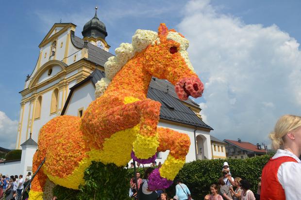 Der Haflinger erinnerte an die Weltausstellung im Fohlenhof, die im kommenden Jahr in Ebbs stattfindet.
