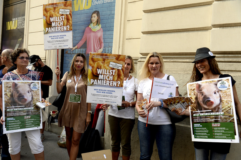 """Protestkundgebung vor der brasilianischer Botschaft """"Der Amazonas brennt - Bolsonaro lenkt!"""" und Protestkundgebung """"Stoppt Brandrodungen für Billigfleisch! Ändert das AMA-Gesetz! Stoppt Mercosur!"""" am Dienstag in Wien."""