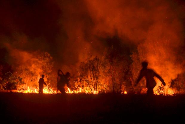 Feuerwehrleute versuchen ein Feuer in der Region Riau (Indonesien) zu bekämpfen.