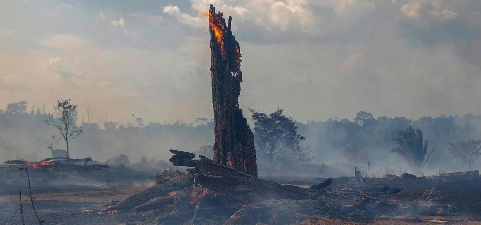 In Brasilien wüten die schwersten Waldbrände seit Jahren. Seit Jänner stieg die Zahl der Feuer und Brandrodungen im größten Land Südamerikas im Vergleich zum Vorjahreszeitraum um 80 Prozent.