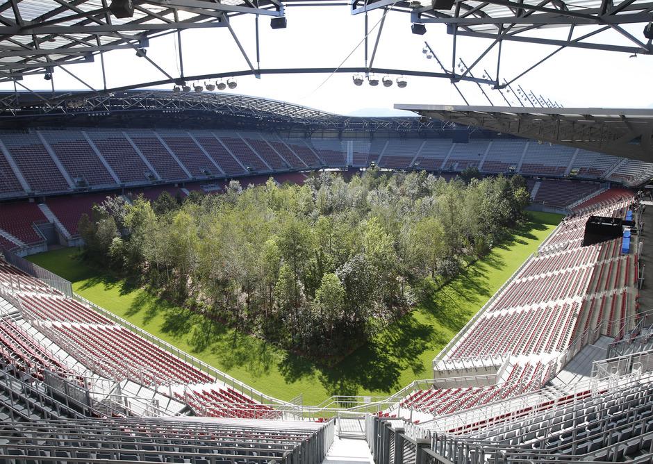 Bei dem Projekt wurden fast 300 bis zu 14 Meter hohe Bäume ins Stadion gestellt.